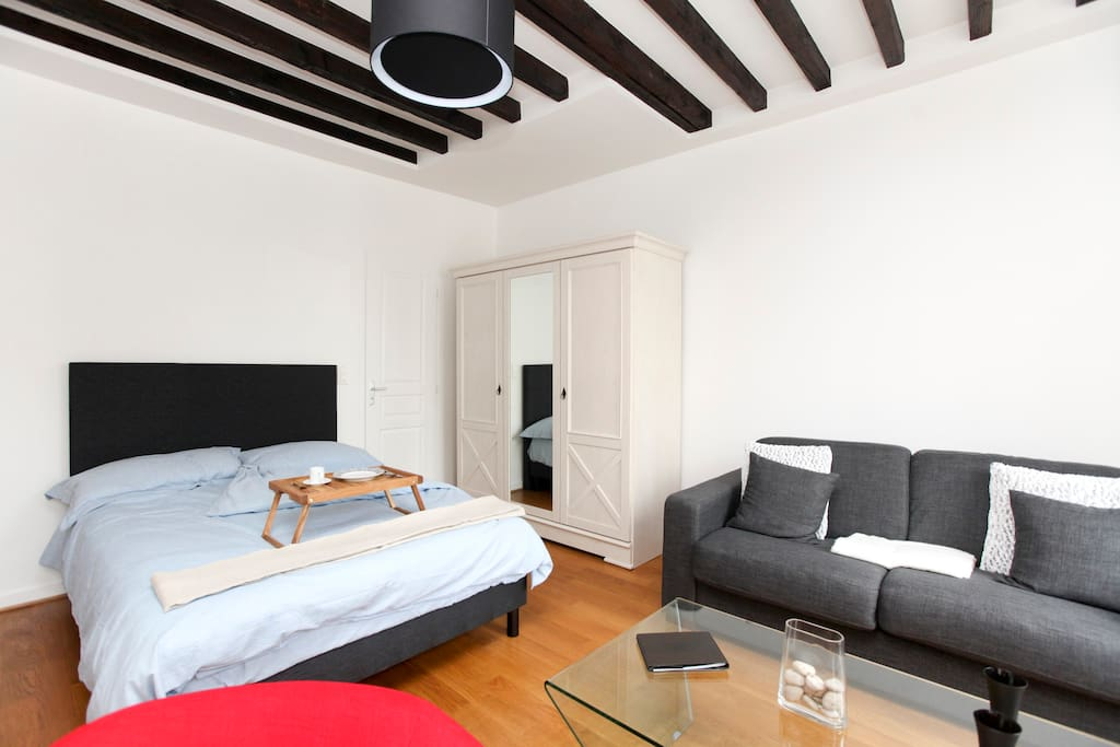 Enjoy Paris from a comfortable, bright and quiet flat in the heart of the Marais!