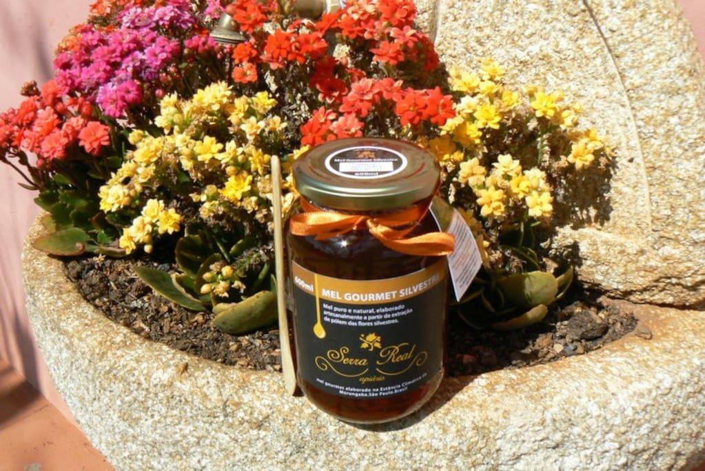 Mel puro de nosso apiário