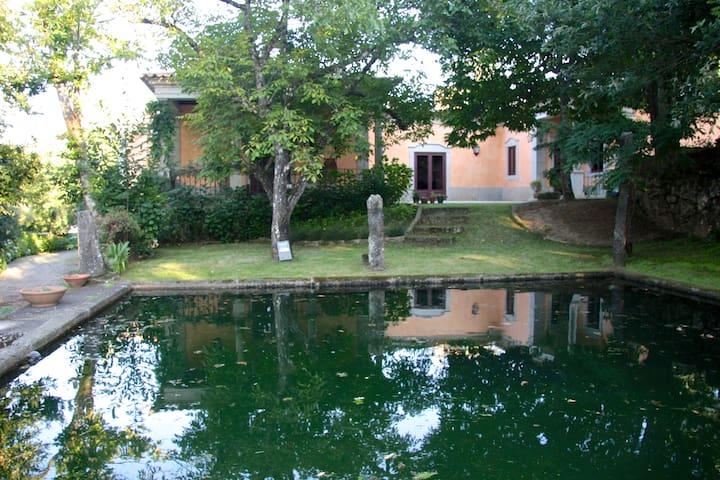 Quinta de Santa Maria-Luxury Villa - Rebordões de Santa Maria - Villa