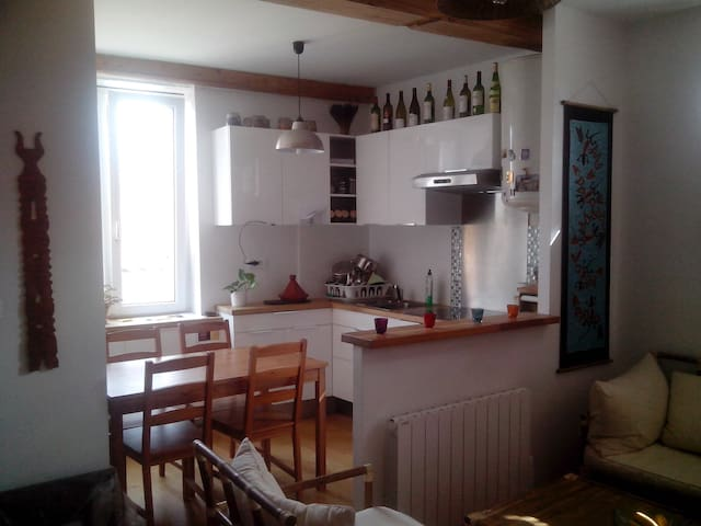 Beautiful renovated studio of 28m2 - Saint-Cyr-au-Mont-d'Or - Daire