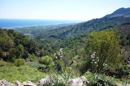 "Corse, mer et montagne "" U Muntese"" - Penta-di-Casinca"