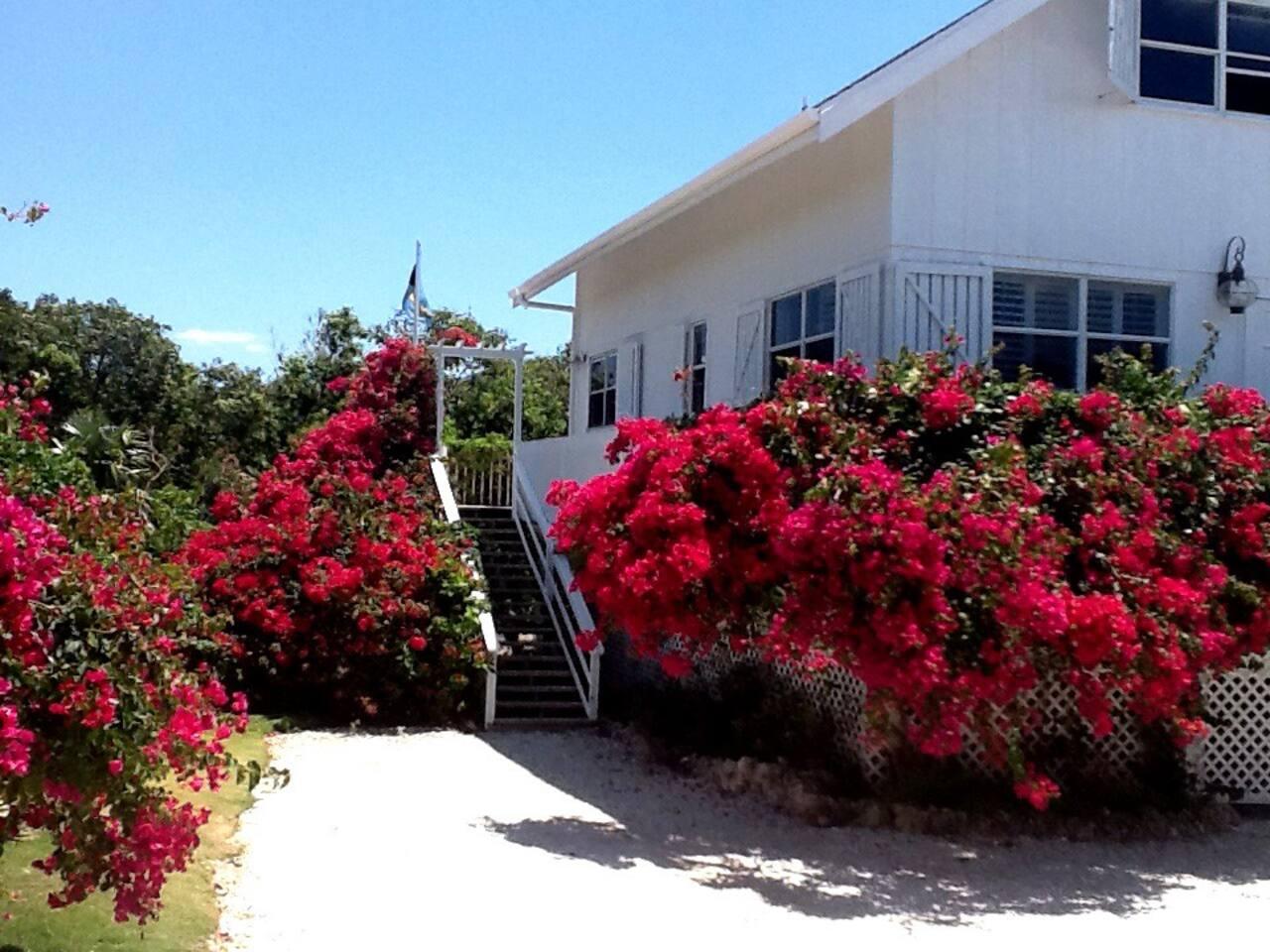 Summer House, Abaco, Bahamas