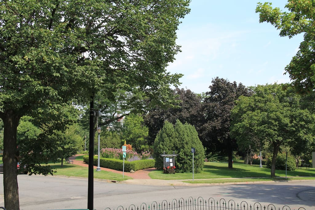 Lowry Park From Front Porch