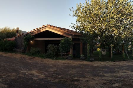Etna-EcoruralSuite nestled in the vineyards
