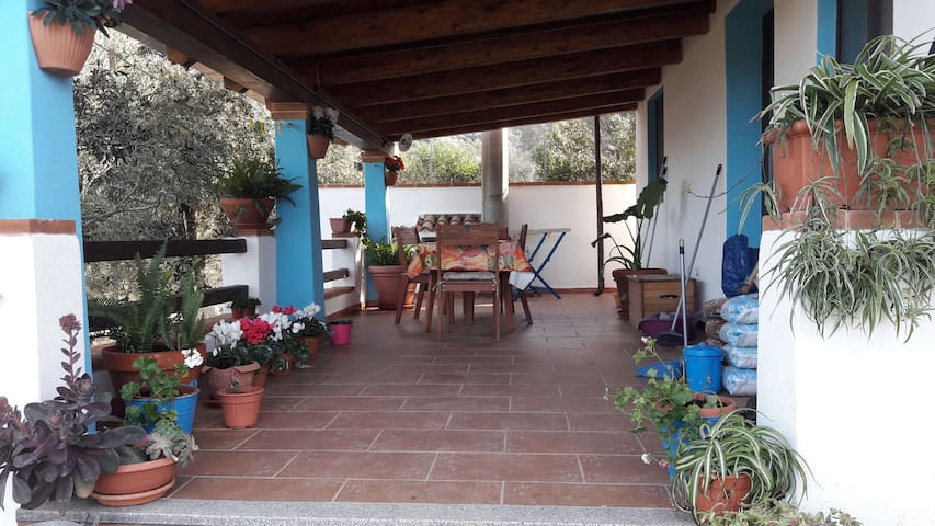 Casa Badu e Carros - Oliena - 一軒家