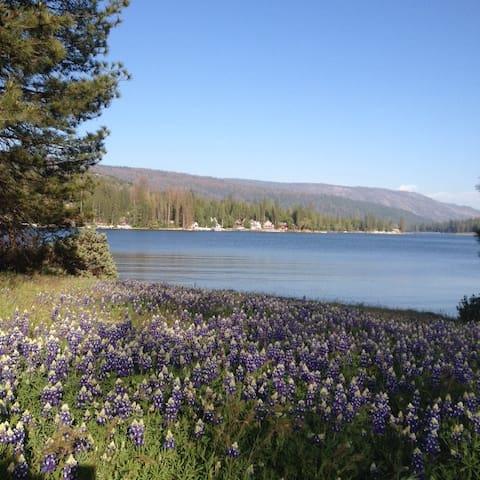Yosemite , Bass Lake , Sierra National forest