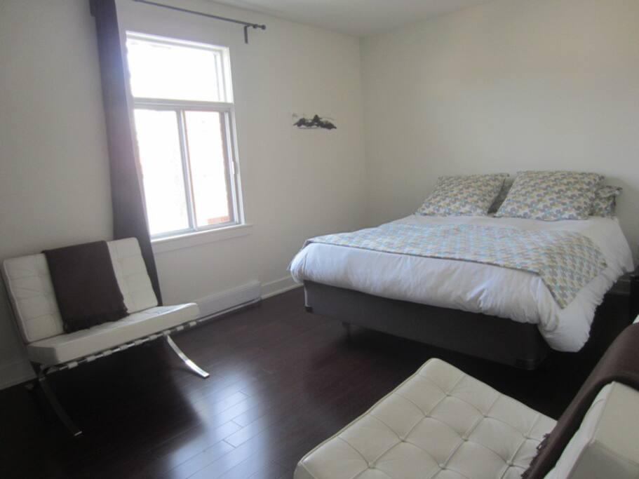 Chambre spacieuse et lumineuse avec lit queen