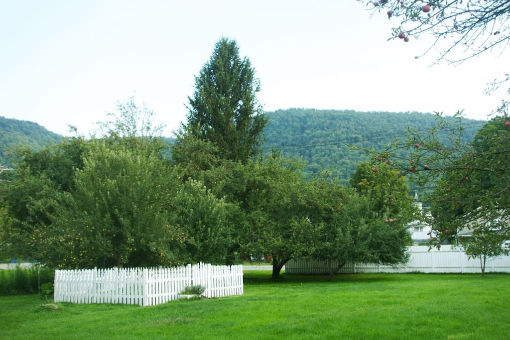 Catskill Mountains and Herb Garden View from Porch