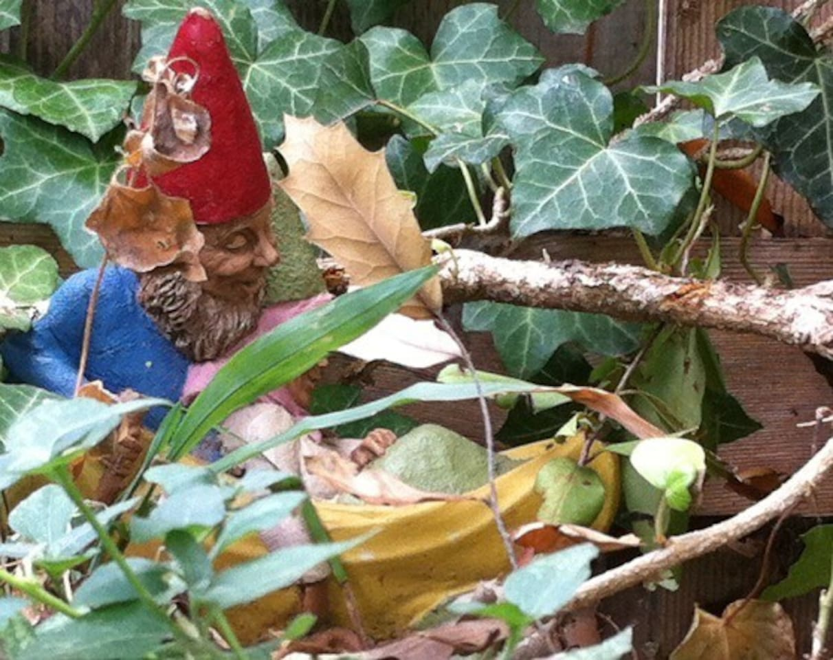 Gnomes afoot in the gardens.