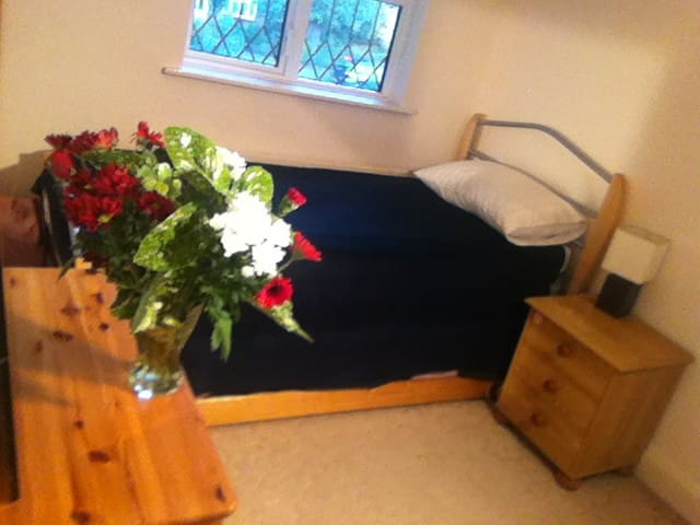 2min2station, cosy in a quiet home - Addlestone - House