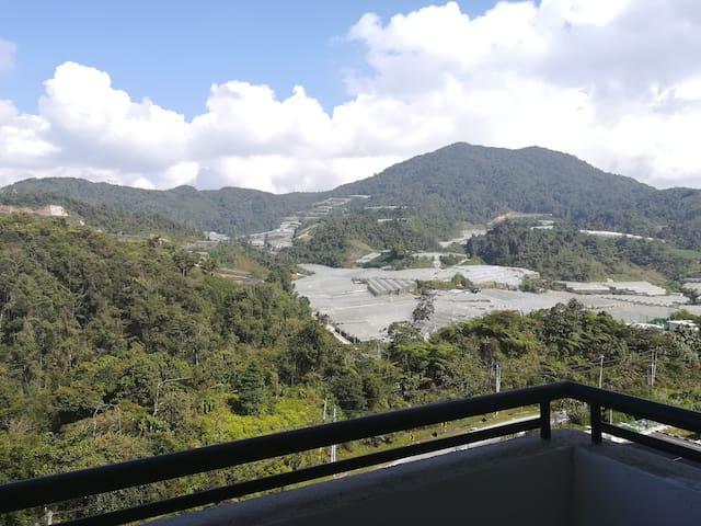 Blue valley homestay (kg.Raja)