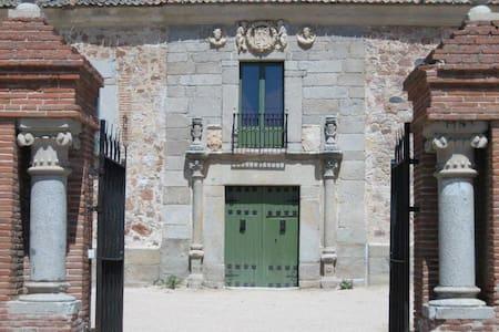 Palacio de Hoyuelos, Naciente 10 p - Santa María la Real de Nieva