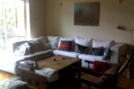 Cosy Room for Professionals  - Nairobi - Wohnung