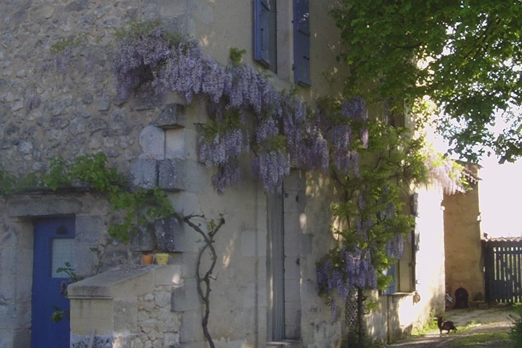 Chambre d 39 h tes pr s saint emilion houses for rent in for Chambre d hote saint emilion