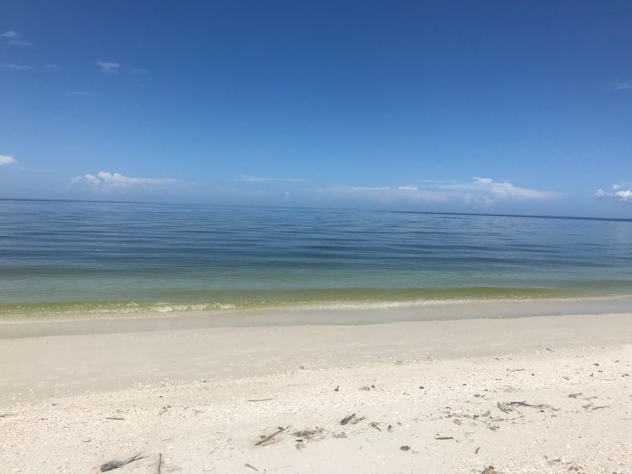 Bonita Bay's community beach just a shuttle ride away with shuttle stop steps from our spot.
