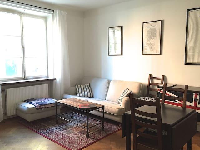 Spacious 1 Room Apt on Södermalm - Stockholm - Lägenhet