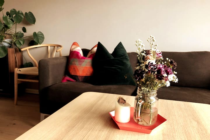 A beautiful apartment close to Oslo city center