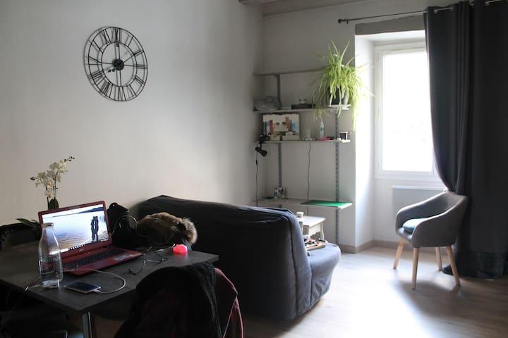 Appartement dans le quartier de la Doutre à Angers