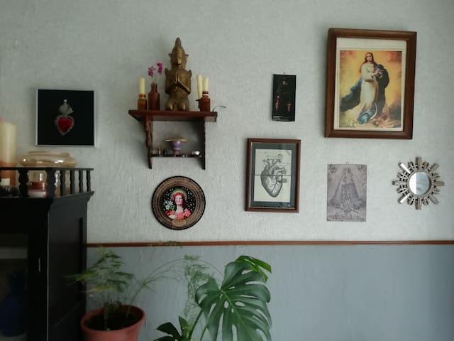 Casa Botánica de la bisabuela