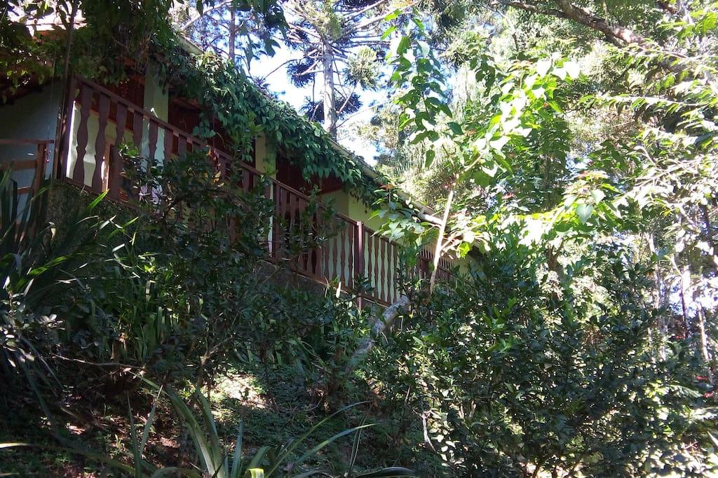 A casa, rodeada de verde.
