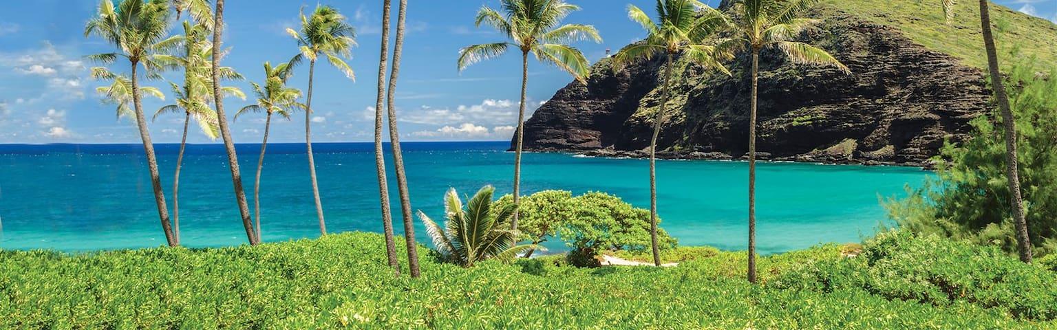 Maui Book