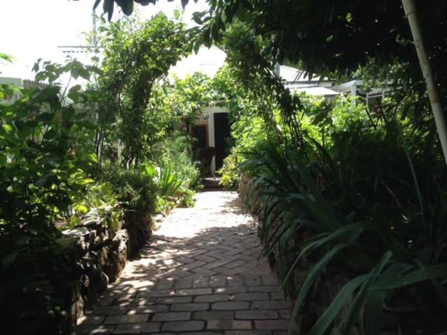 A secret garden setting.
