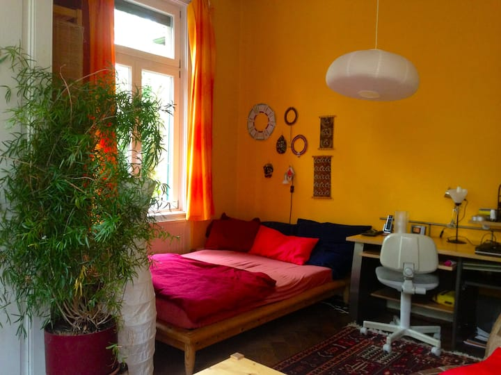 nice room in beautiful area