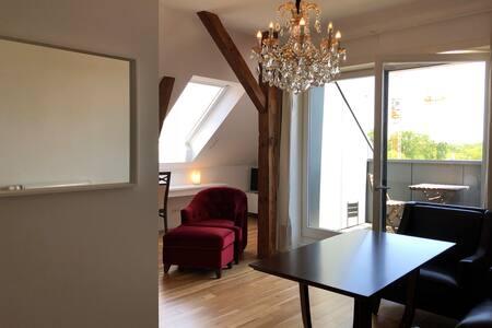 2 Zimmer Dachapartment mit Balkon,Küche und Dusch