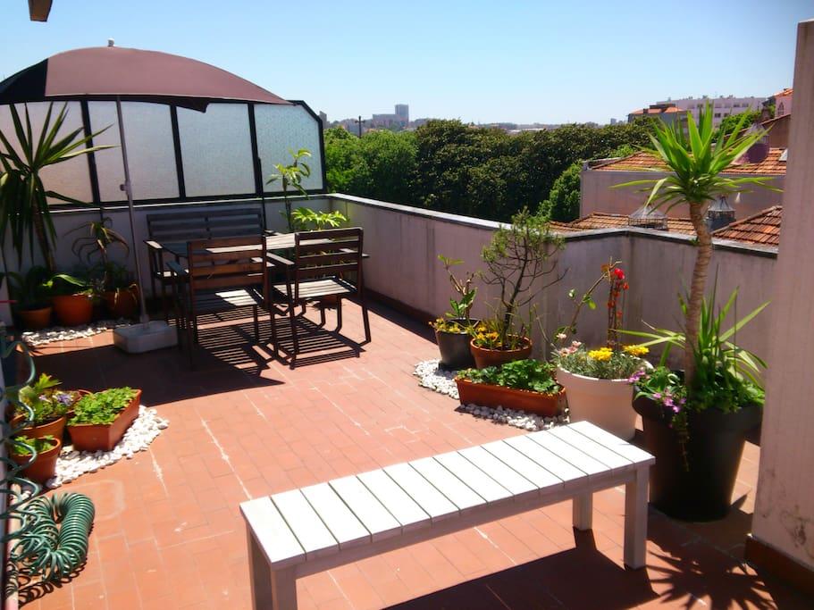 Big terrace apartment city center flats for rent in for Terrace 45 quezon city