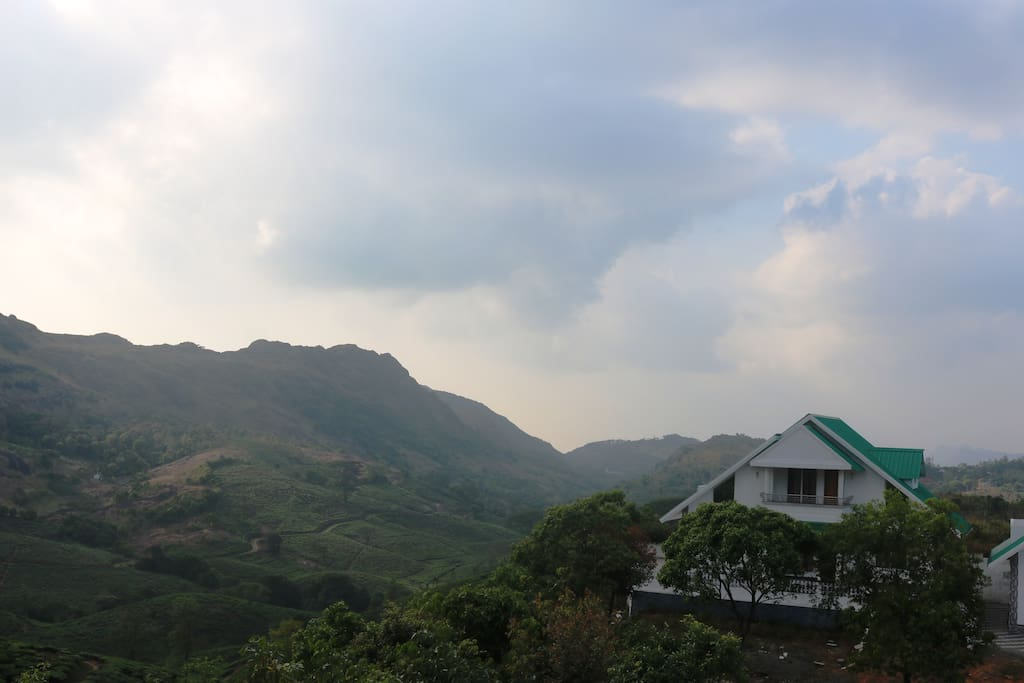 Thangal Hills and tea valley backdrop