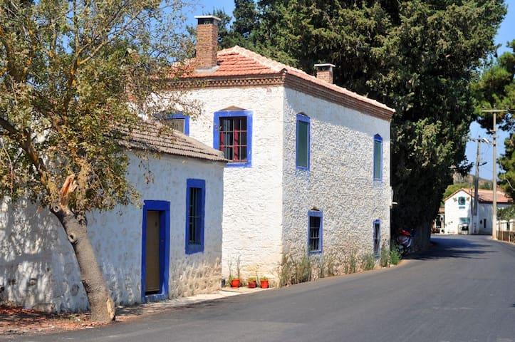 Aegean Stonehouse in Mandarin trees - Bodrum - Huis