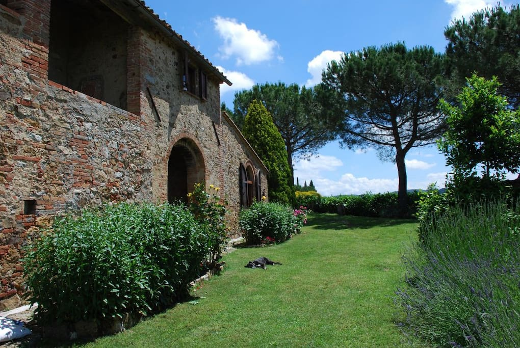 Ancient Podere outside
