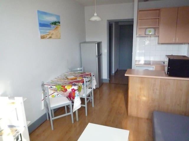 BEL APPT AU COEUR DE L'AUVERGNE - Châtel-Guyon - Apartamento