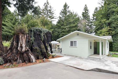 Pigeon Point Escape - Quiet, cozy, in the Redwoods - Eureka - Hus
