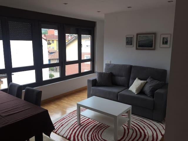 Arriondas: céntrico y nuevo apartamento VUT814AS