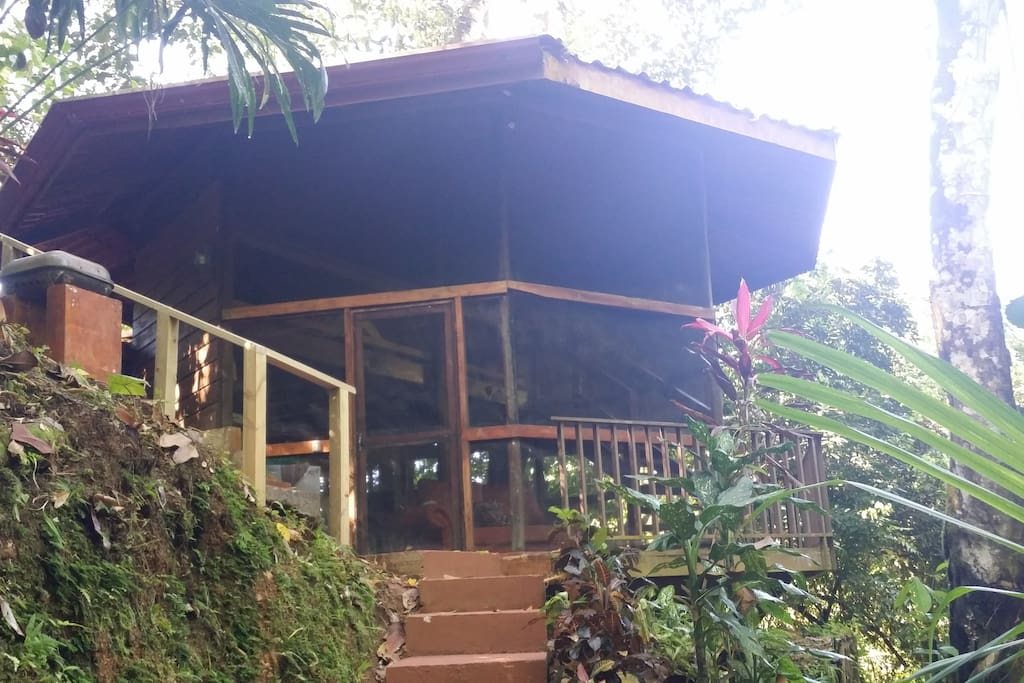 Waterfall villa jungle retreat villas for rent in for Villas for rent in costa rica