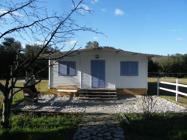 logement 5 personnes - Moltifao - Bungalow