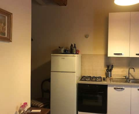Mini-apartament elegant vd3