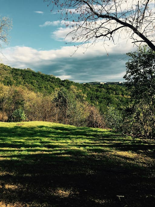 This is the view of the greenbelt from my patio.