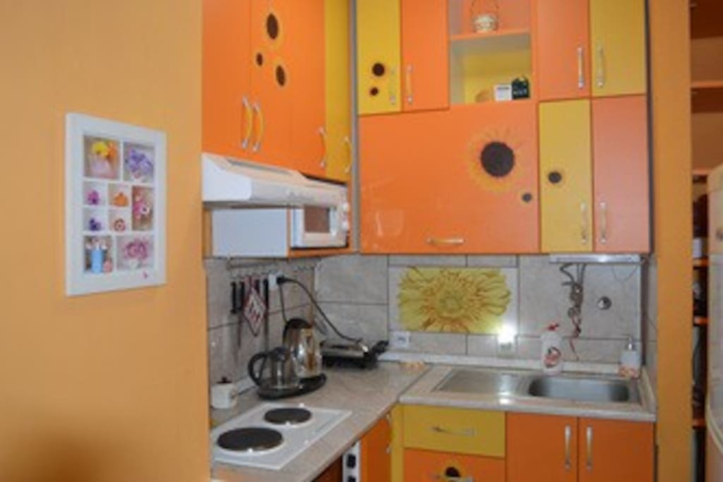 Kitchen with fridge, mini oven, toaster, microwave...