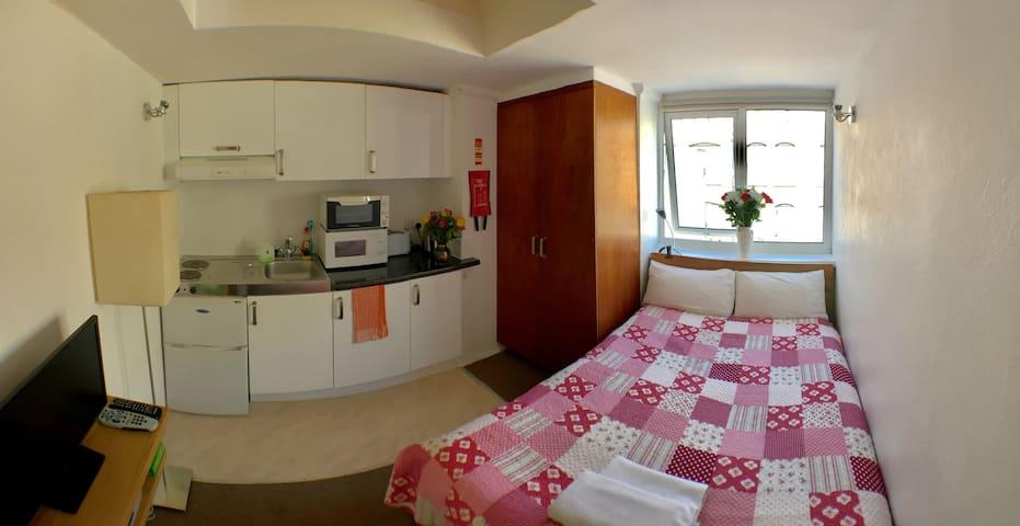Bloomsbury  Apartment P/6 - London - Lägenhet