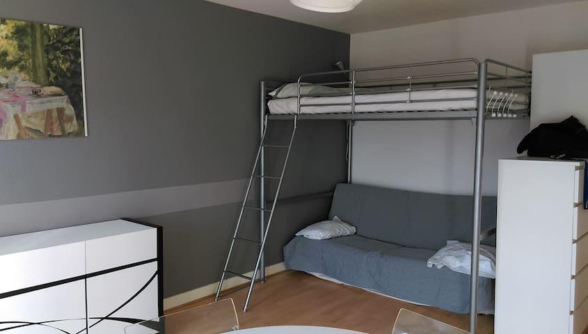 Grand studio de 30m² à 2 min Chaville RD - Chaville - Appartement
