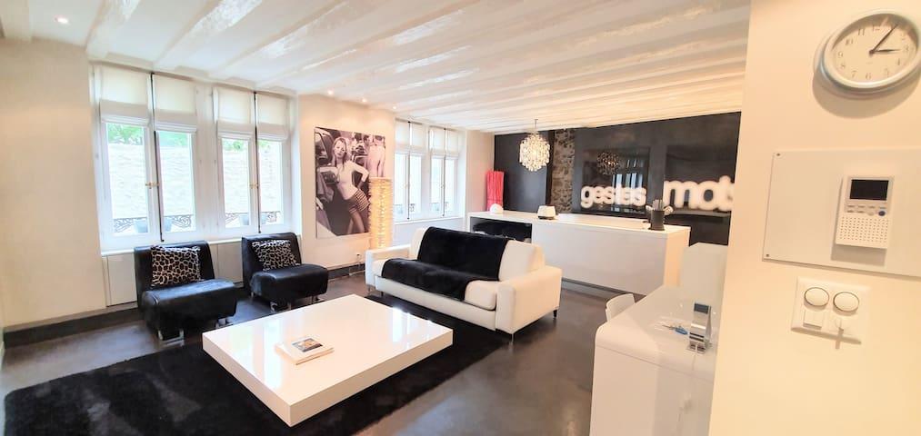 Sublime appartement au centre-ville