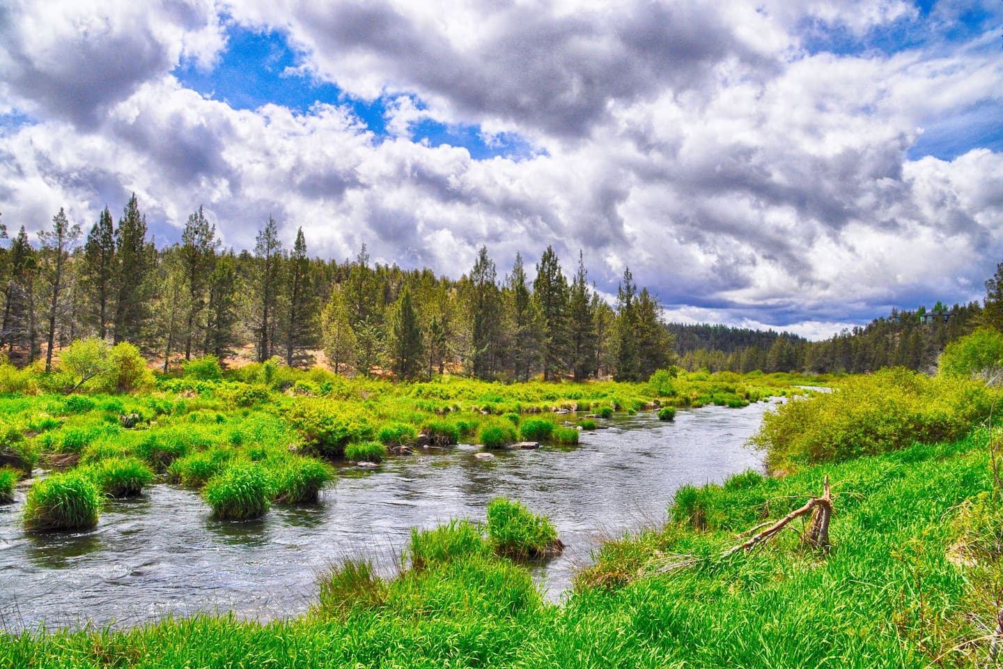 Hiking trail along the Deschutes River in the resort