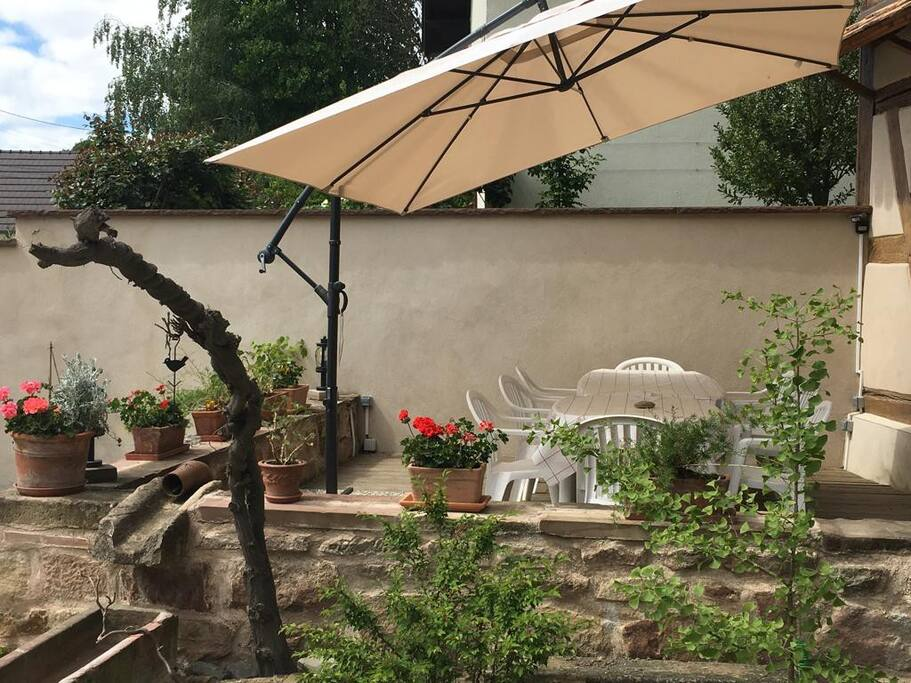Terrasse du gîte Au Tulipier du Ried
