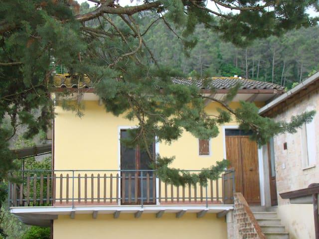 Casa vacanze LO SCARPARO