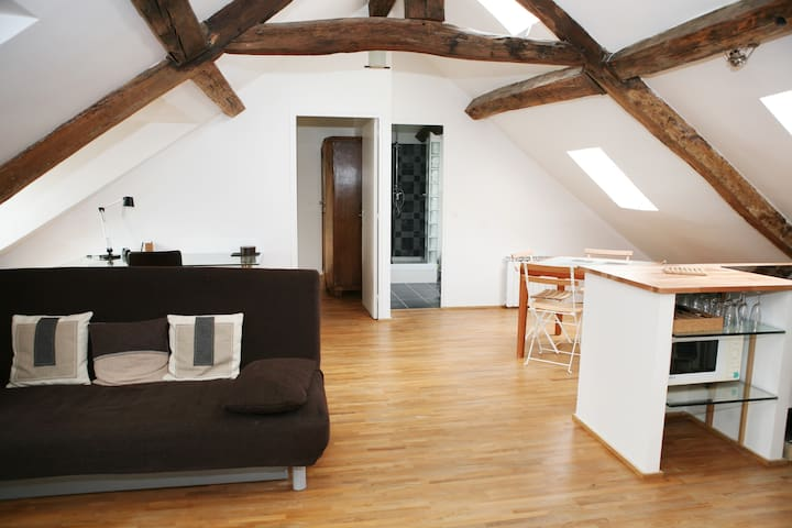 Top floor apartment in Le Marais