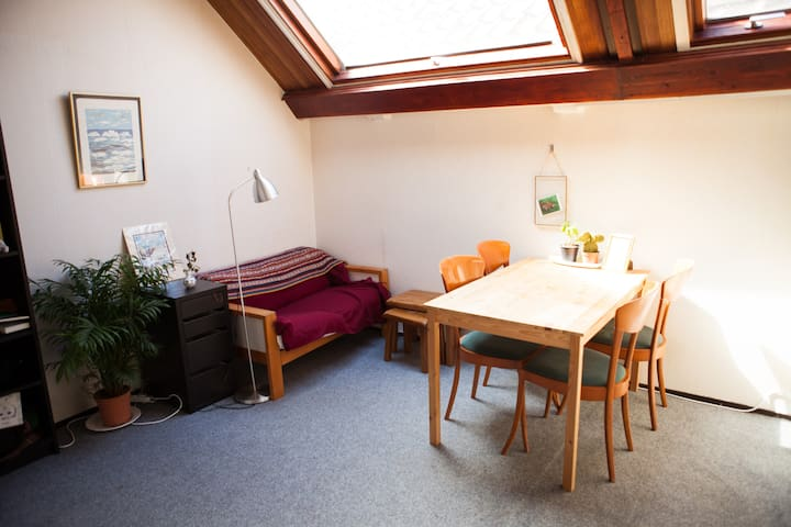 Lovely humble roof apartment in beautiful Leiden - Leiden - Apartamento