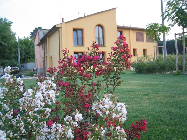 Saluto al sole - home Vinacciano