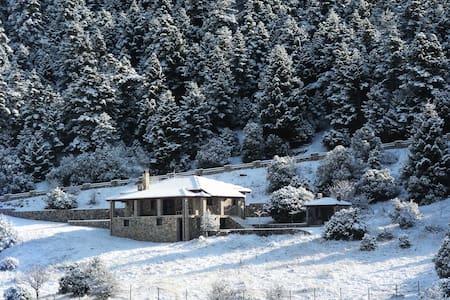 """Panorama Balcony"" Mountain Chalet-Manor House"